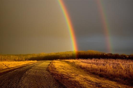 Rainbow_elam_1
